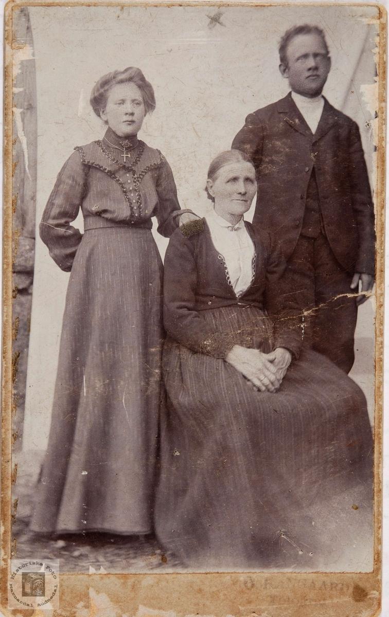 Portrett, mor med datter og sønn (svigersønn?) Trolig fra Audnedal.
