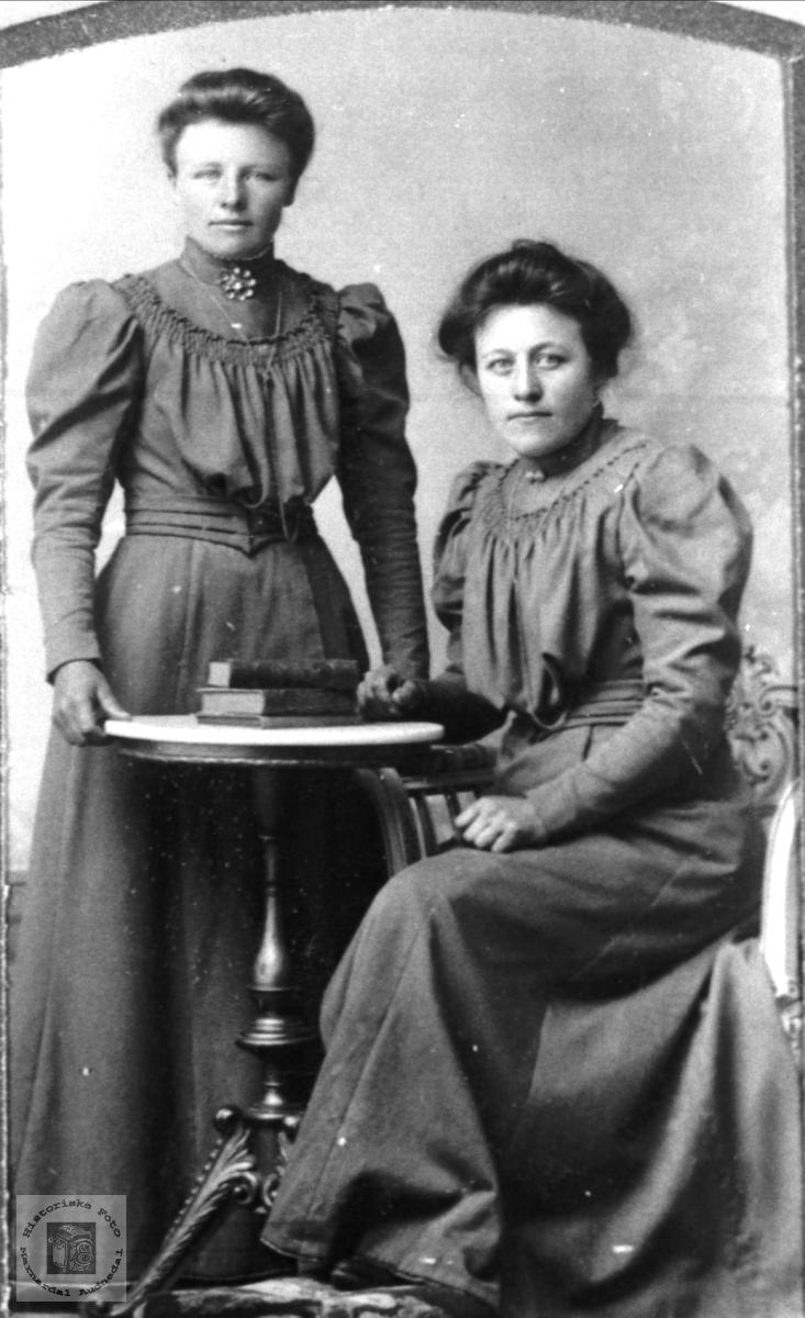 Portrett av søstrene Siri og Anna Bjerland, Bjelland.