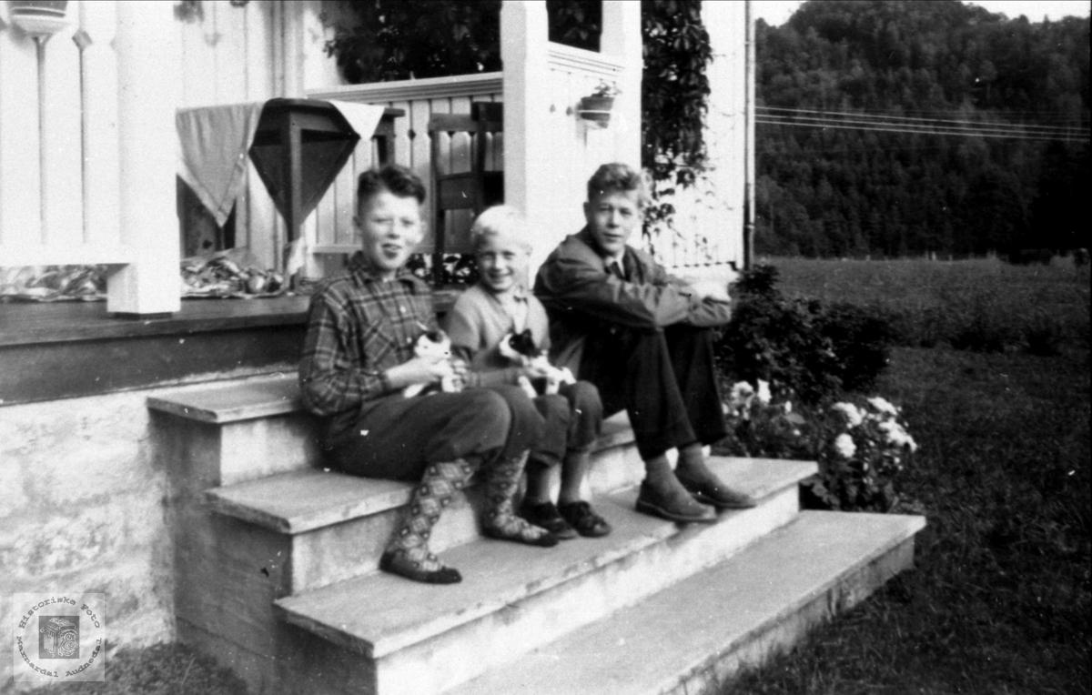 Barn på trappa på Trygsland i Bjelland.