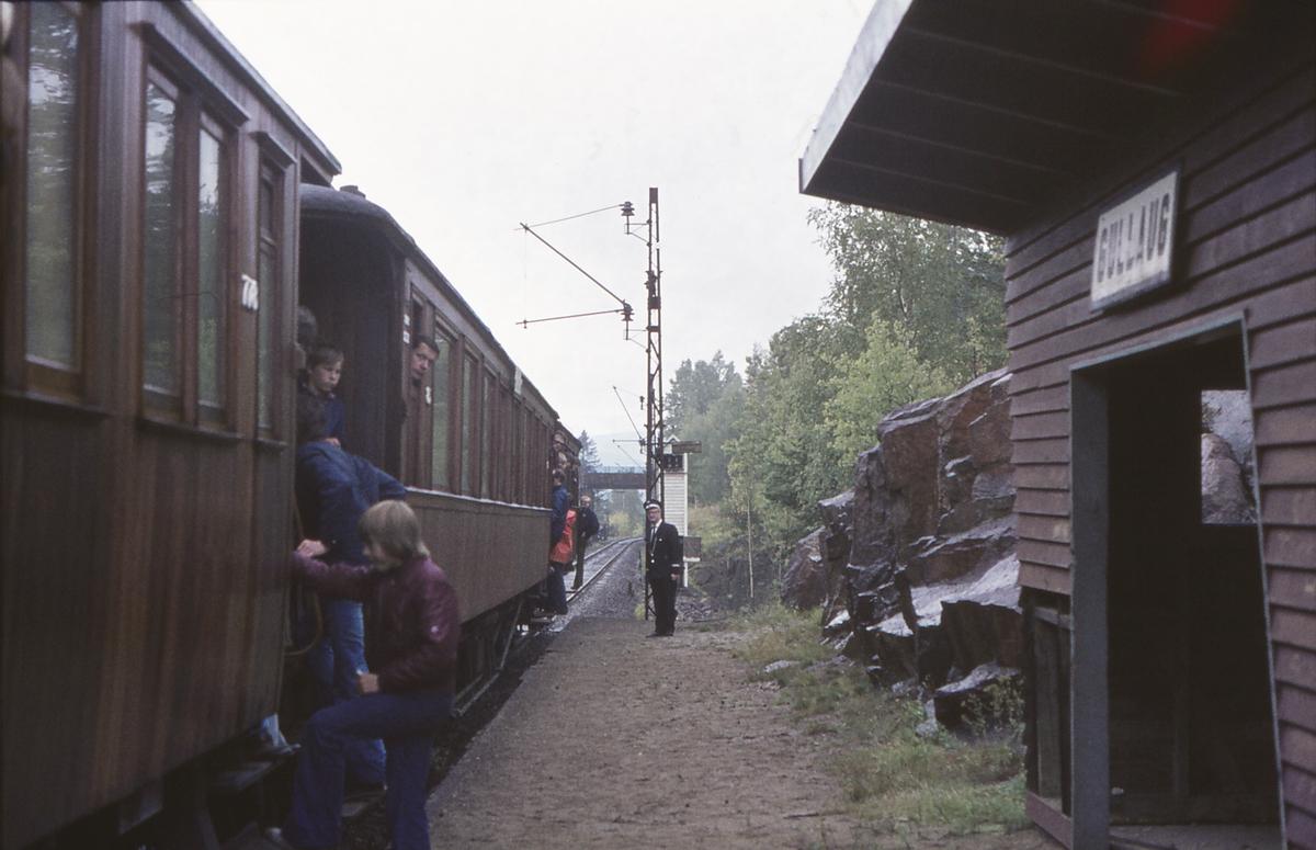 Ekstratog for Norsk Jernbaneklubb med damplokomotiv Norsk Hydro M2 på den nedlagte delen av Drammenbanen. Gullaug holdeplass.