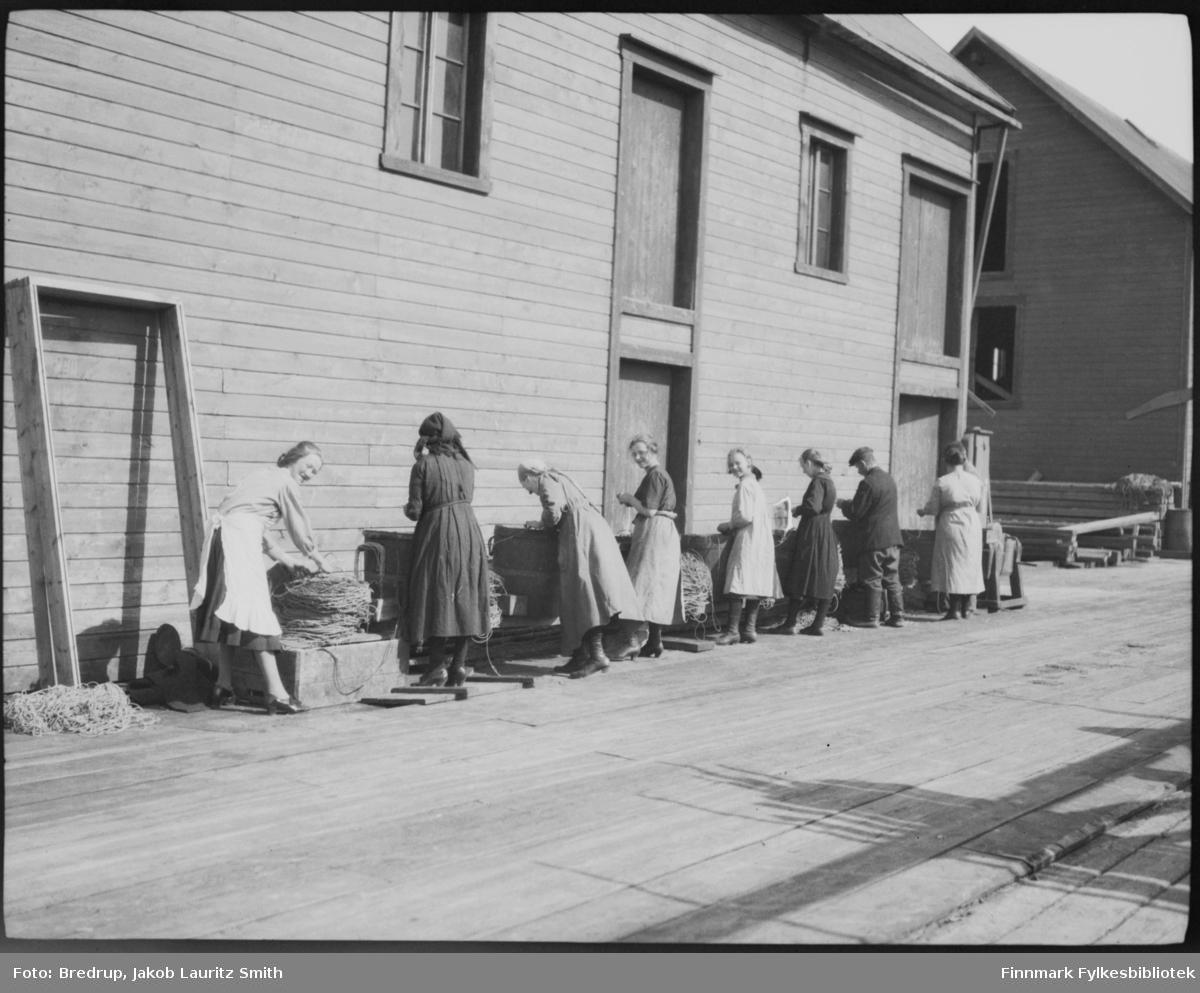 Egning på en kai i Vardø en solskinnsdag.  Egnerne er flest kvinner og jenter, men vi ser et par menn også.  Linestampene står på rekke langs veggen til en av bygningene på kaia.