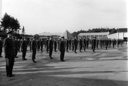 Militært personell. Gruppefoto. Oppstilling, mange personer,