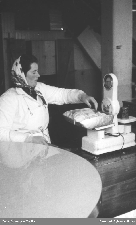 Filetpakker Ester Jensen i arbeid på fabrikken i Bergsfjord 1953. Her veier hun fisk. På filetfabrikken gikk man tre skift og det ble rigget til ekstra pakkebord i mottaket når det sto på som verst i sesongene