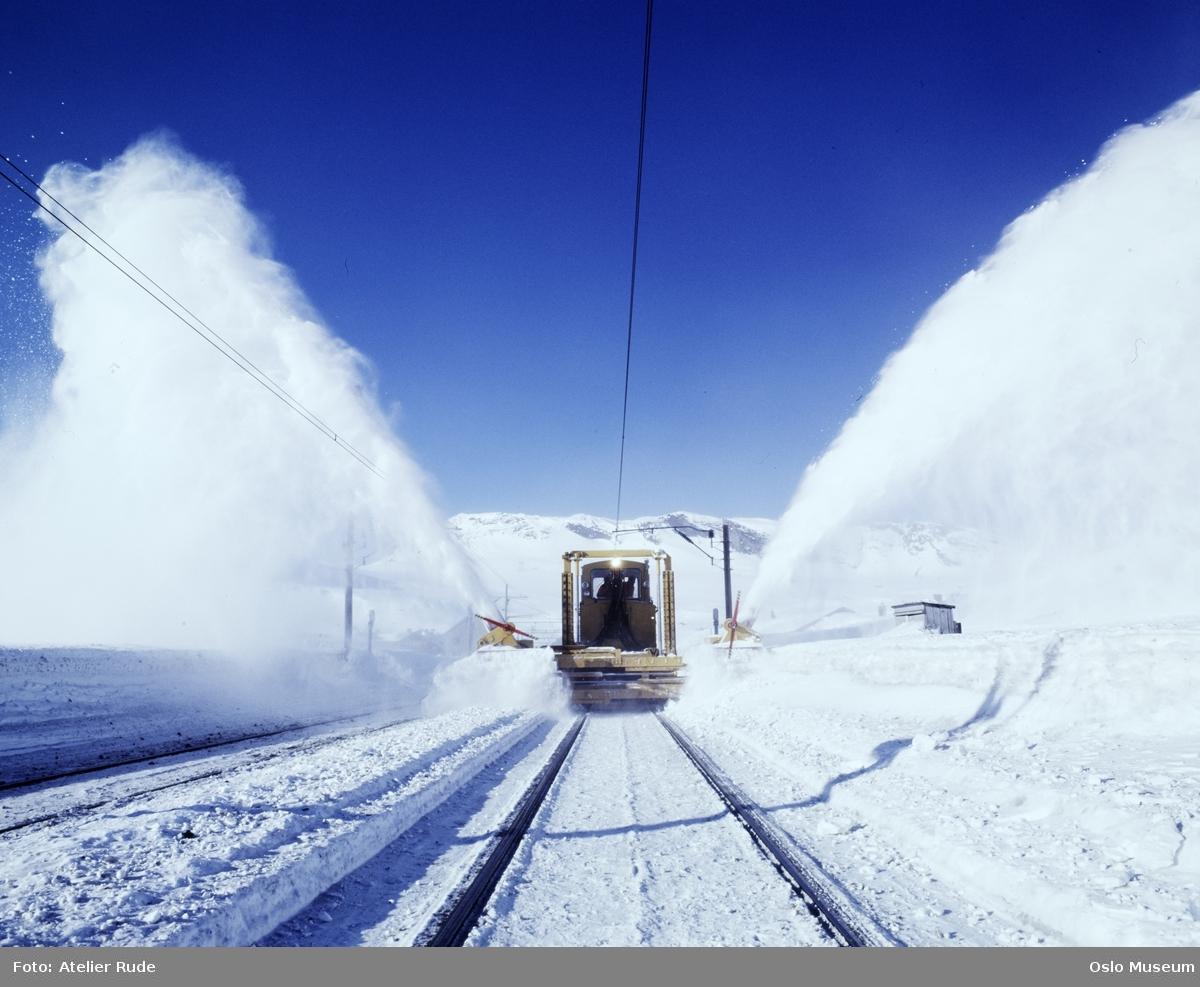 Finse jernbanestasjon, snøplog