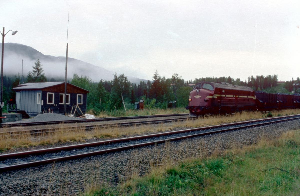 Lastet malmtog for Rana Gruver på Storforshei stasjon.