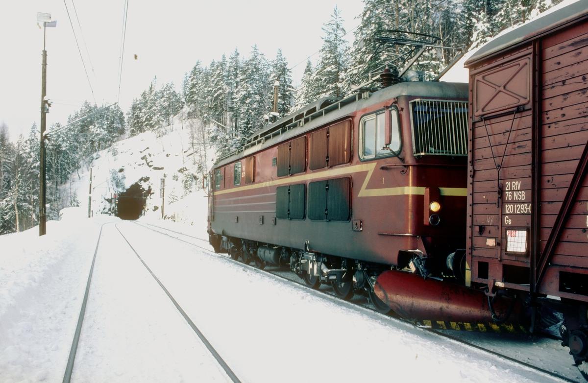 Godstog 5501 venter på kryssende tog i Ørgenvika stasjon.