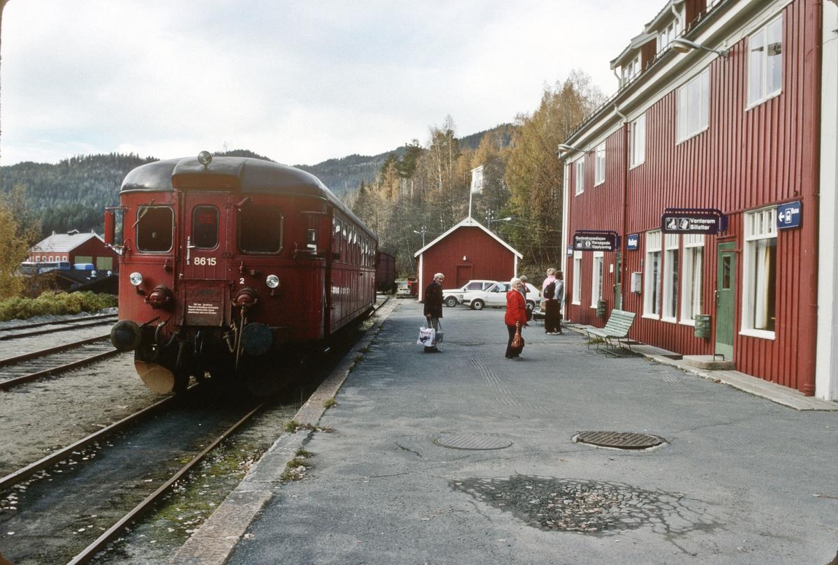 Rødberg stasjon. Persontog fra Kongsberg har ankommet i spor 1. NSB dieselmotorvogn BM 86K 15