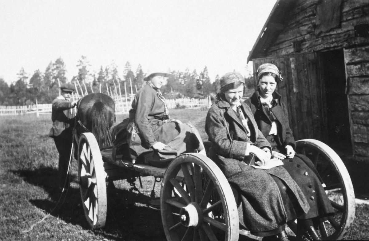 Bildet er trolig tatt på begynnelsen av 1900-tallet, muligens 1916 (se referansebilde -015 med samme tilvekstummer). Sittende bakerst fra venstre: antas å være Gudrun Skogsholm og Inga Brodtkorb (gift Hollum). Gudrun holder hansker i fanget, Inga har de på seg. Den tredje kvinnen er ukjent, likeså mannen som fører hesten. Kvinnene har på seg hatt, skaut, skjørt, sko, skjorter og jakker. De sitter på en vogn som blir trukket av en hest. I bakgrunnen ser man gjerder og trær. Ved siden av vognen se man et uthus.