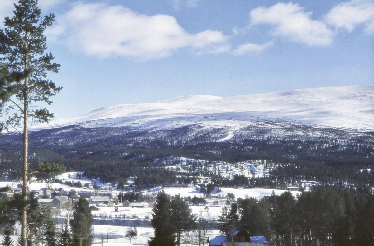 Utsikt mot Hummelfjell (Håmålfjell) fra Øilia, Kvennåsen, Os i Østerdalen.