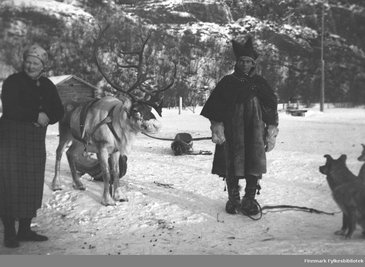 Ole Anti Magga på besøk på Mikkelsnes i Neiden. Han er omgitt av kjørerein, pulker og hunder. Kathinka Mikkola helt til venstre i bildet. I bakgrunnen ser vi en bygning som tilhører John Haaheim. Bygningen ble brukt som kjøttlager og ble også leid ut til de som bygde kaia på Mikkelsnes