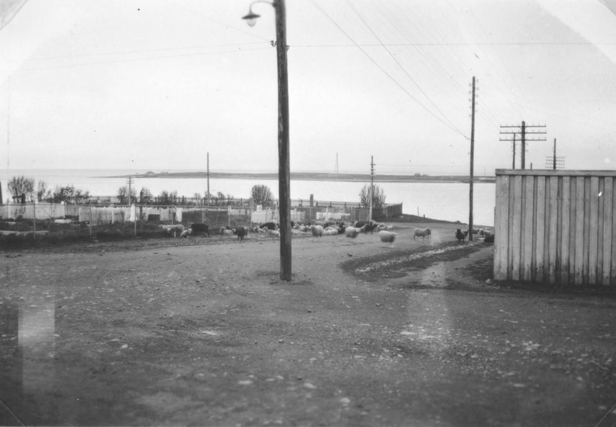 Utsikt fra Aarsæther gården. Det lå på hjørnet ned mot kirkegården. Se bilde nr. 99029-047