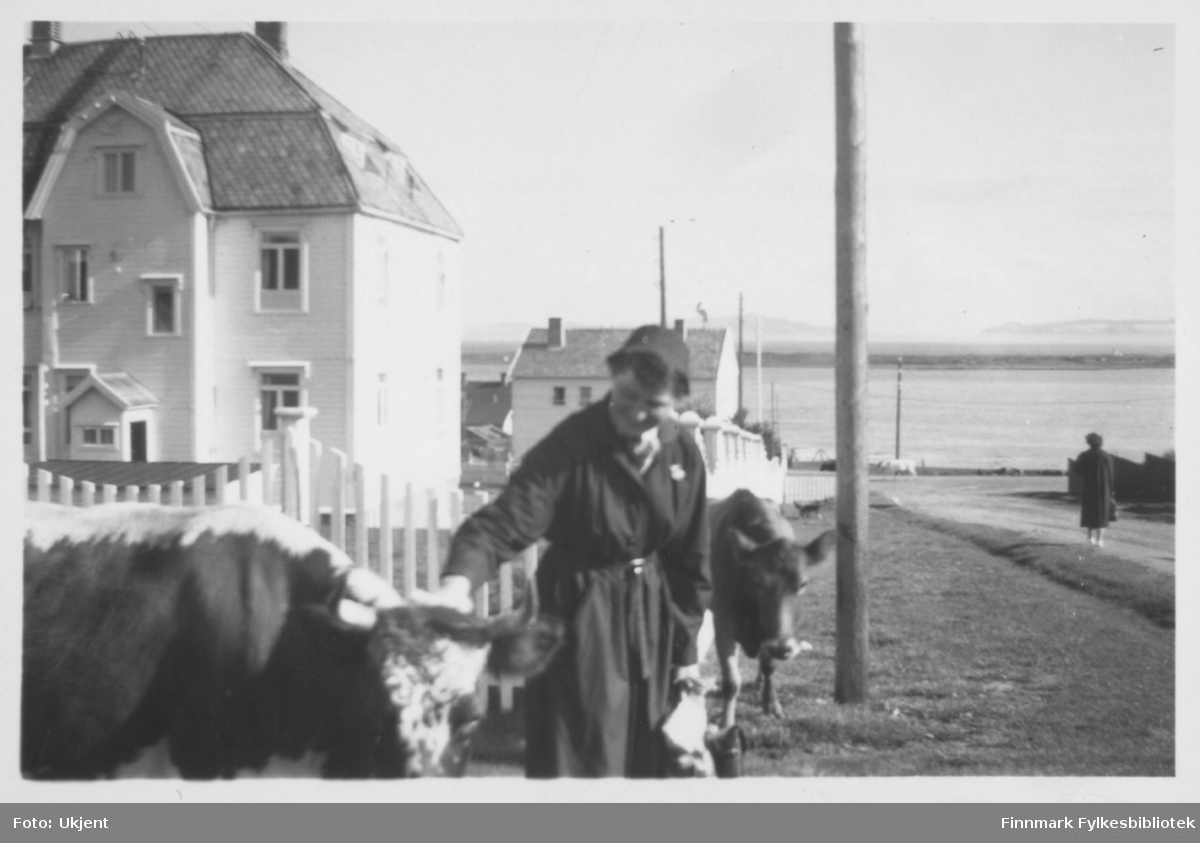 En kvinne (mest sansyndligvis en sykepleier) står foran sykehuset i Vadsø her avbildet med et par kyr. Hun har på seg en kåpe og står ved siden av et gjerde. Bak sykehuset i bakgrunnen kan man skimte et annet hus. På husene kan man se vinduer og skorsteiner. På venstre side av bildet kan man se en vei og havet. Det står en stople ved siden av veien.