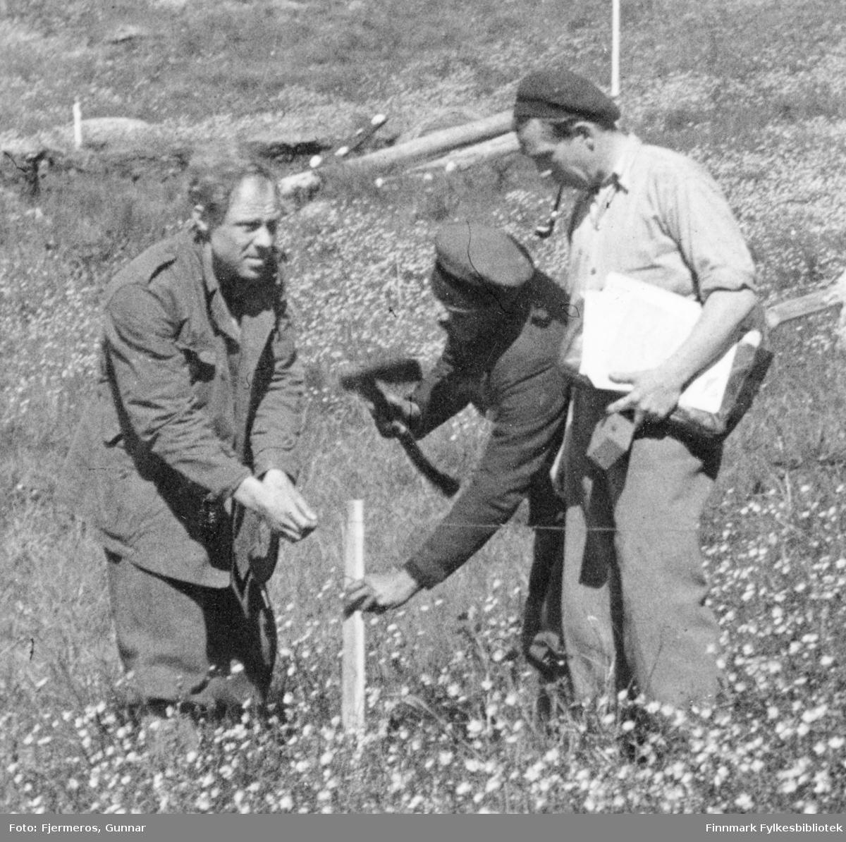 Tre menn måler og stikker ut en tomt. Personer og sted er ukjent, men det kan være i Honningsvåg like etter andre verdenskrig.