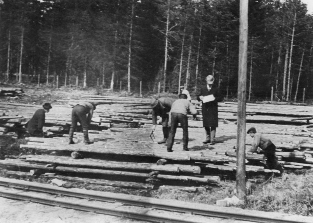Tømmerlunne ved Holmsen og Høybråtens sag ved Aurskog på Urskog-Hølandsbanen
