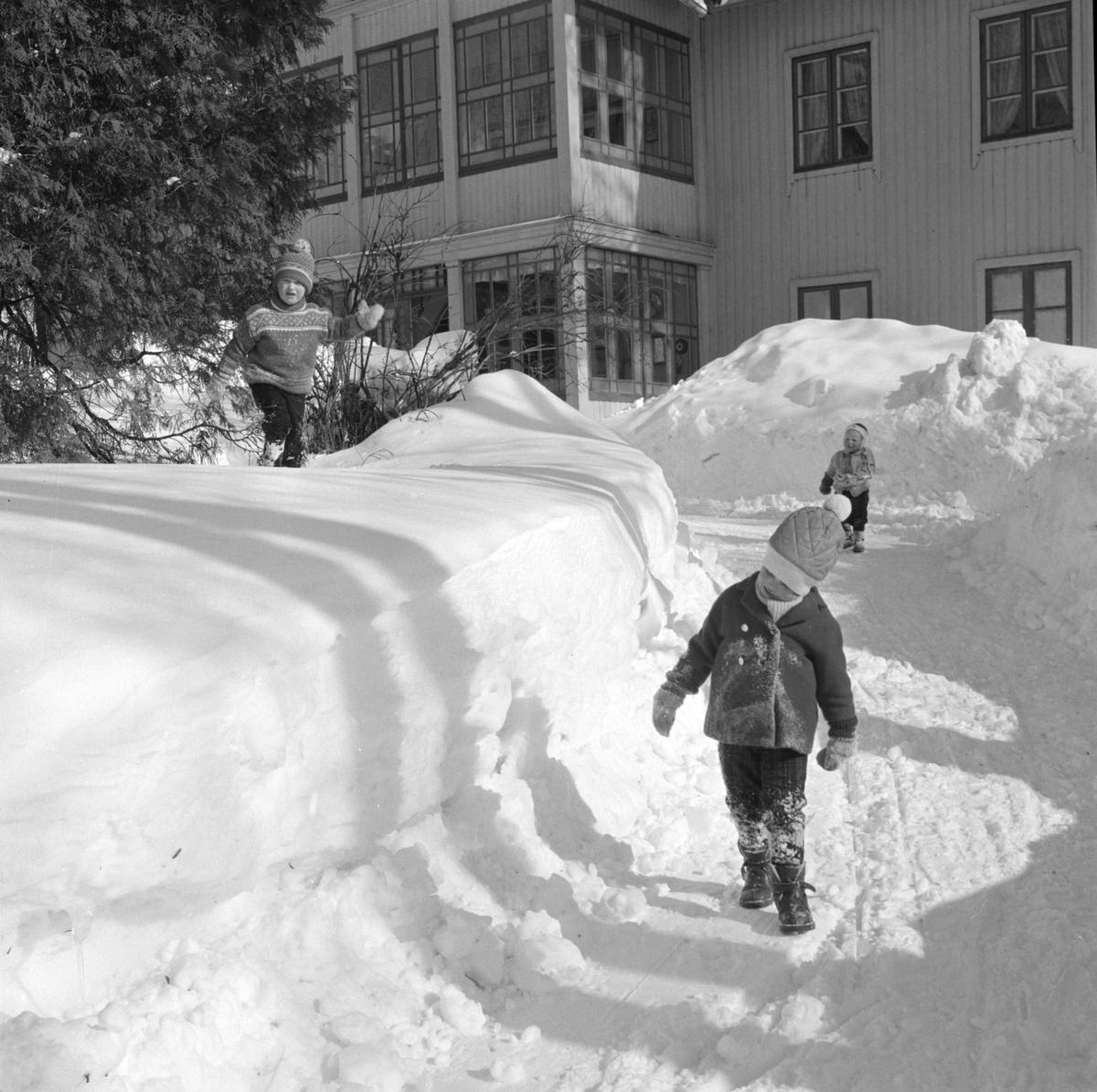 Barn leker i sneen