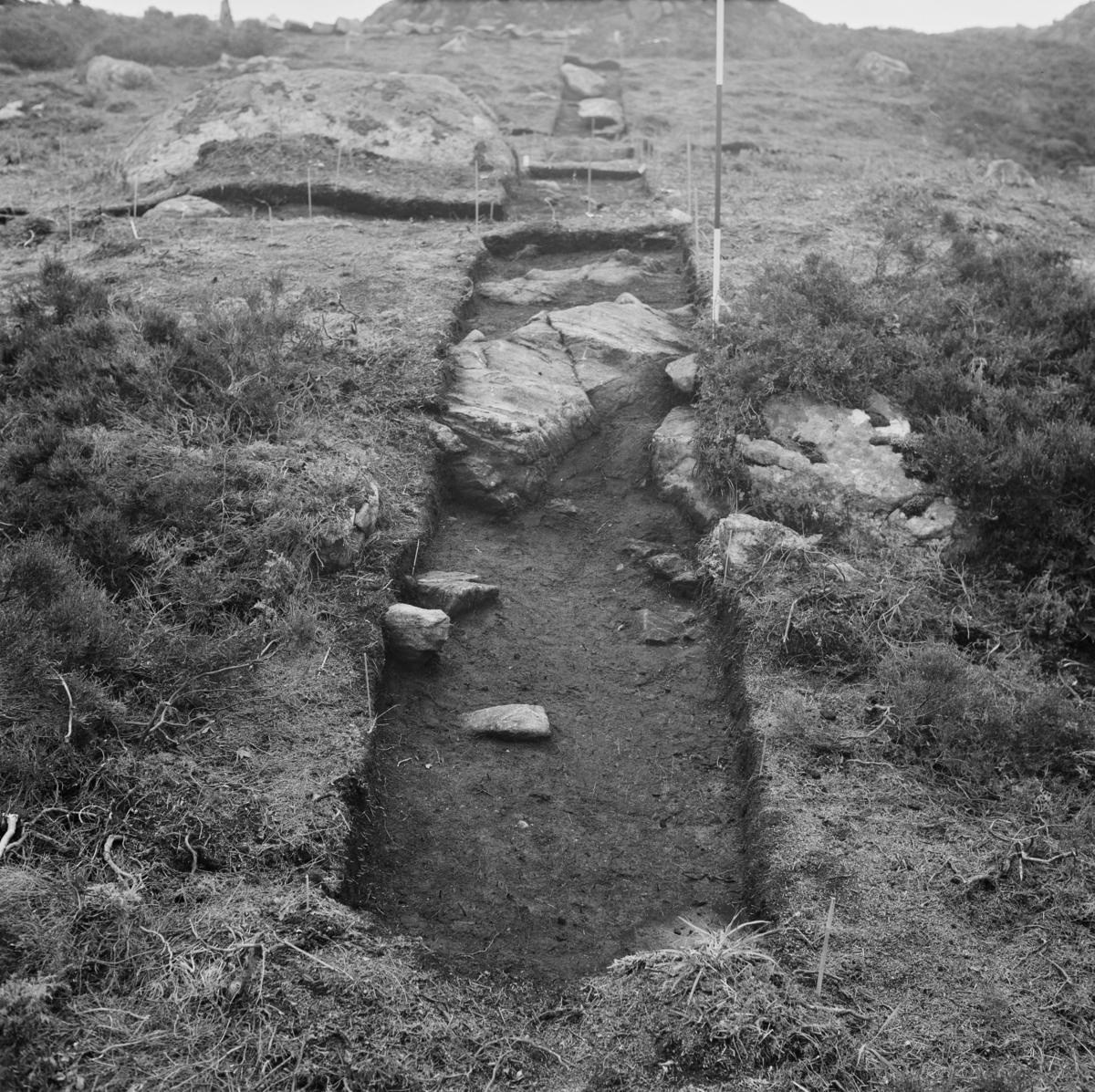 Steinalderboplass R21 under utgravning, etter at lag I er nedgravd; rutene P89 til P93, fra NV.