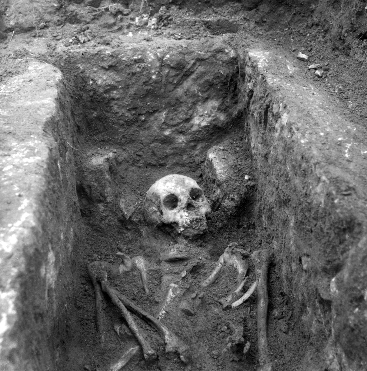 """Sommaren 1954 utfördes schaktningsarbete för ny ledning invid Bjälbo kyrka. På platsen för den tidigare stavkyrkan påträffades en gravhäll med ornerad och runristad lockhäll. Texten utläses """"Torbjörn gjorde denna häll efter Torgeyr"""". Bilden visar skelettgraven efter att hällen avlägsnats. Vy från väst."""