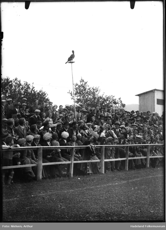 Publikum sitter og står ved en idrettsplass/fotballbane.