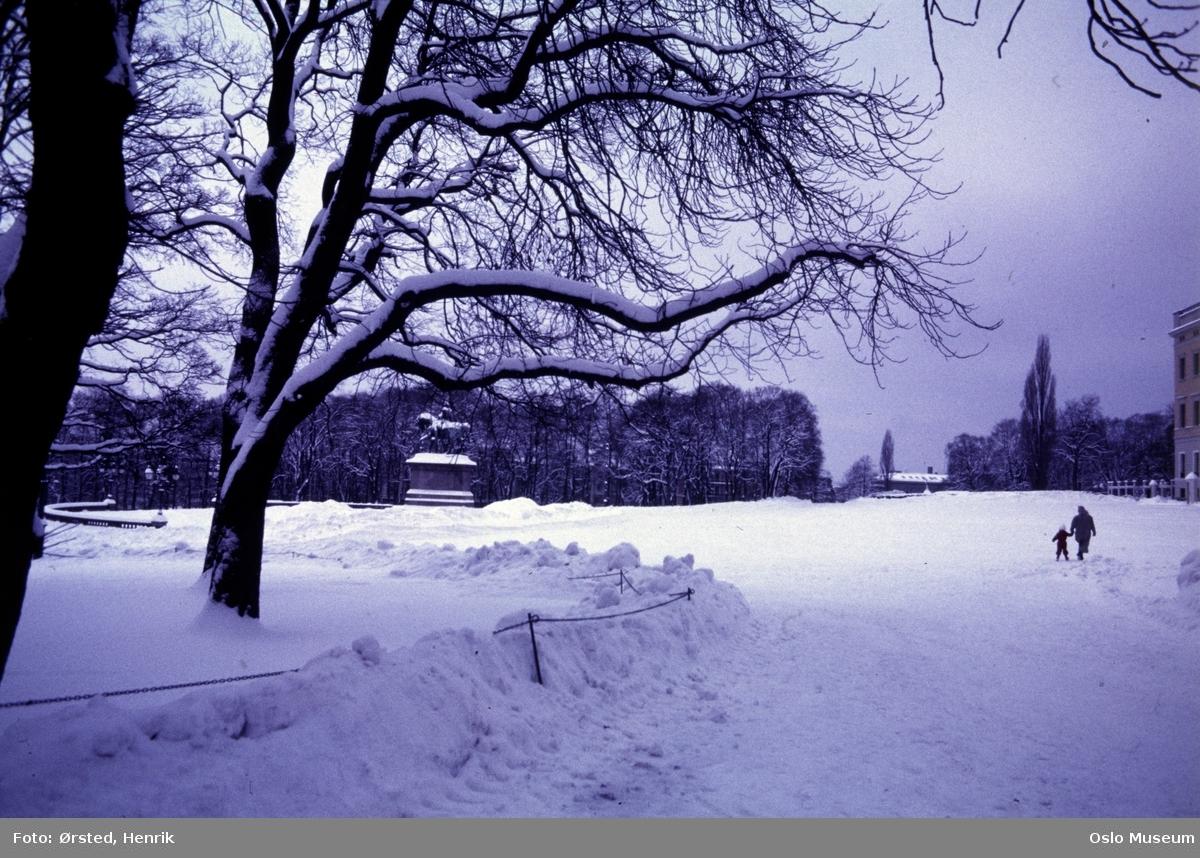 park, plass, snø, rytterstatue, mennesker, Slottet