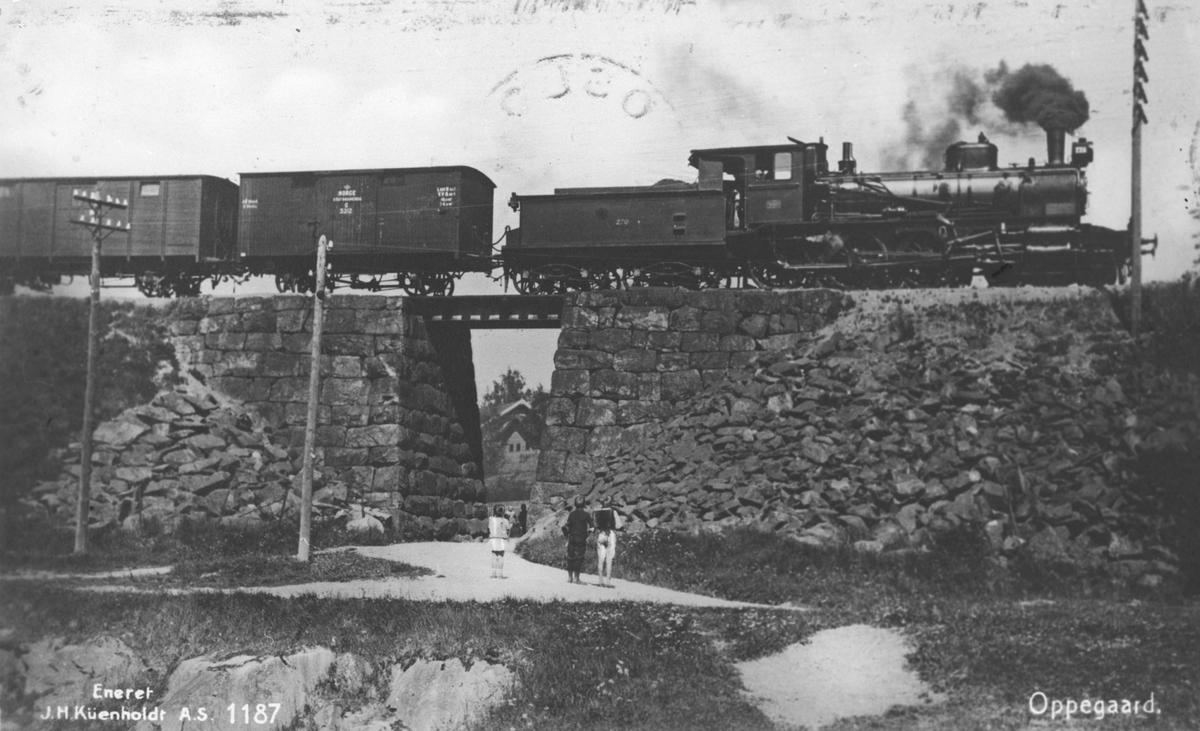 Godstog med damplokomotiv passerer en kulvert.