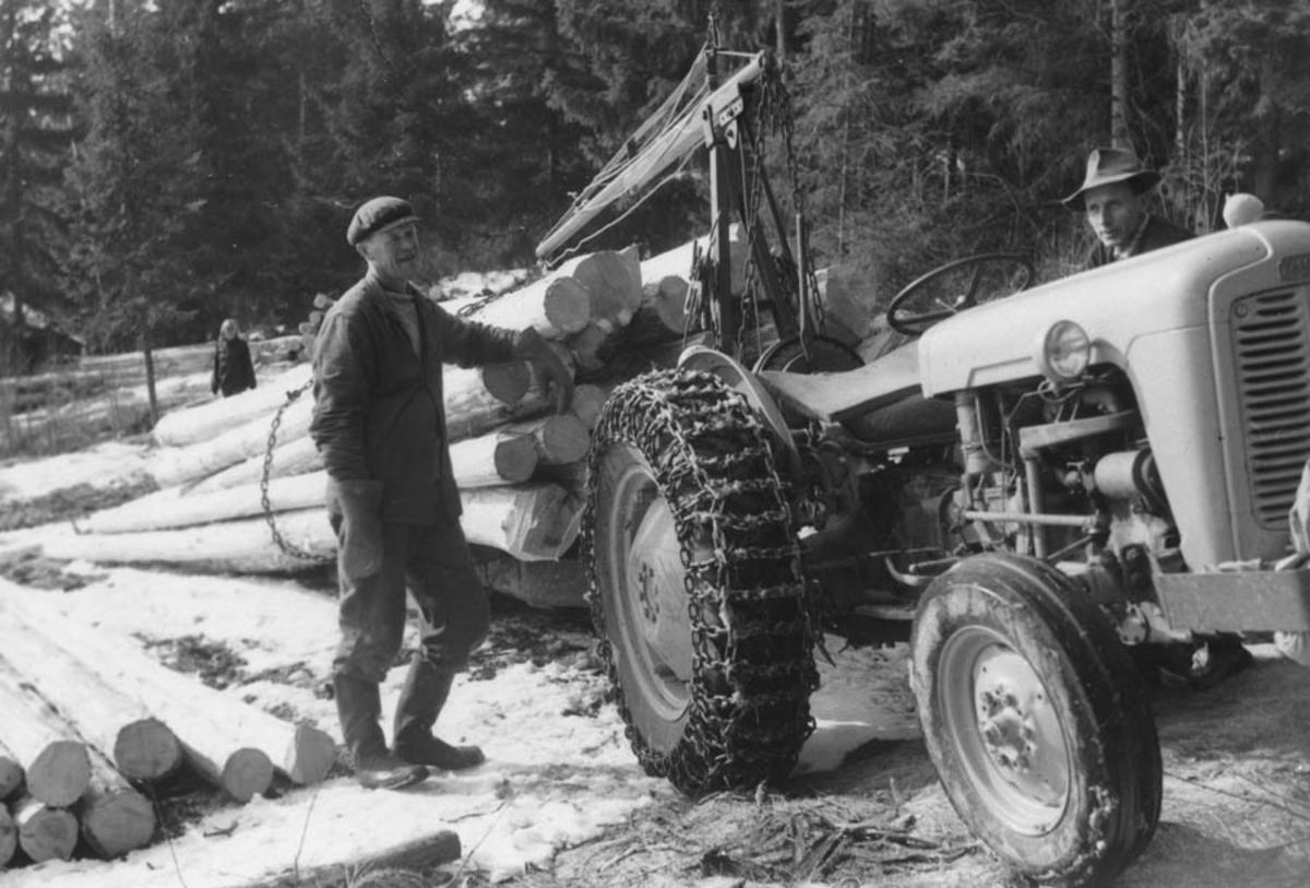 Ole Løken. Skogsdrift med traktor (en Gråtass).