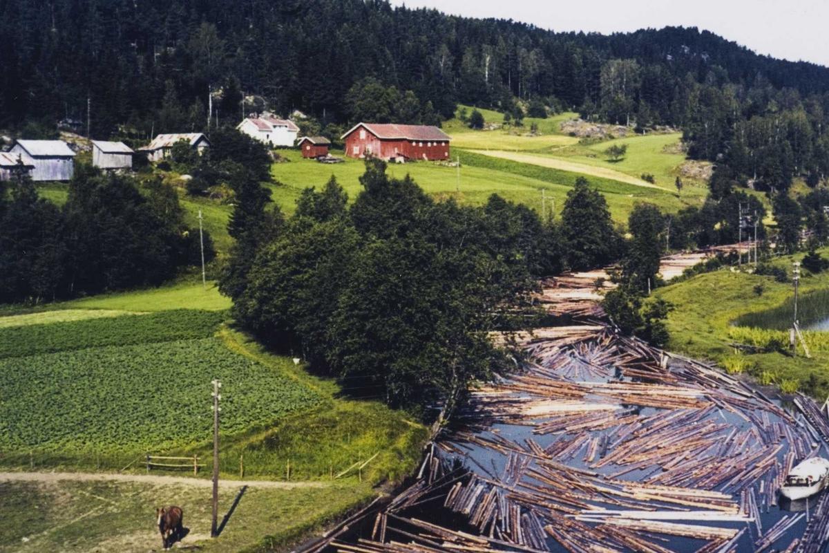 Gårdsbruk og elv med tømmer 1965