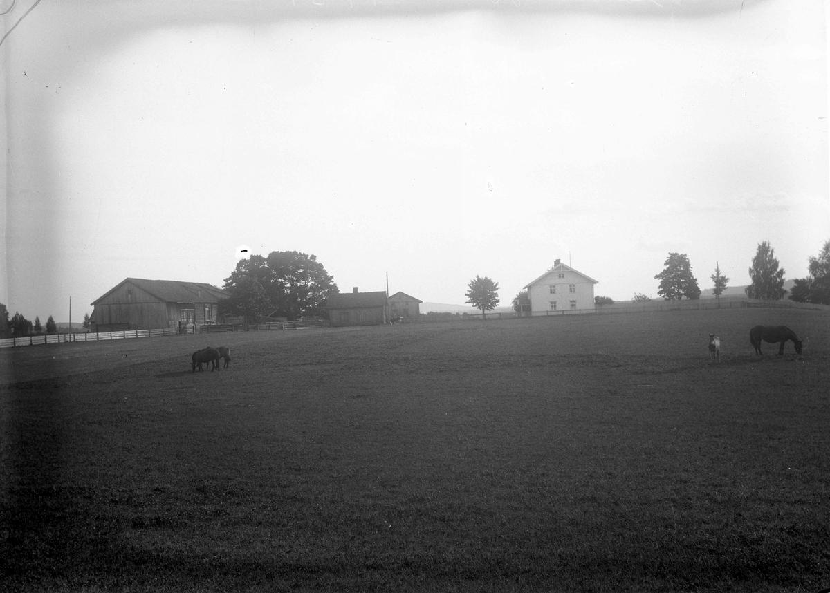 Halvor Øvren, gård 1925
