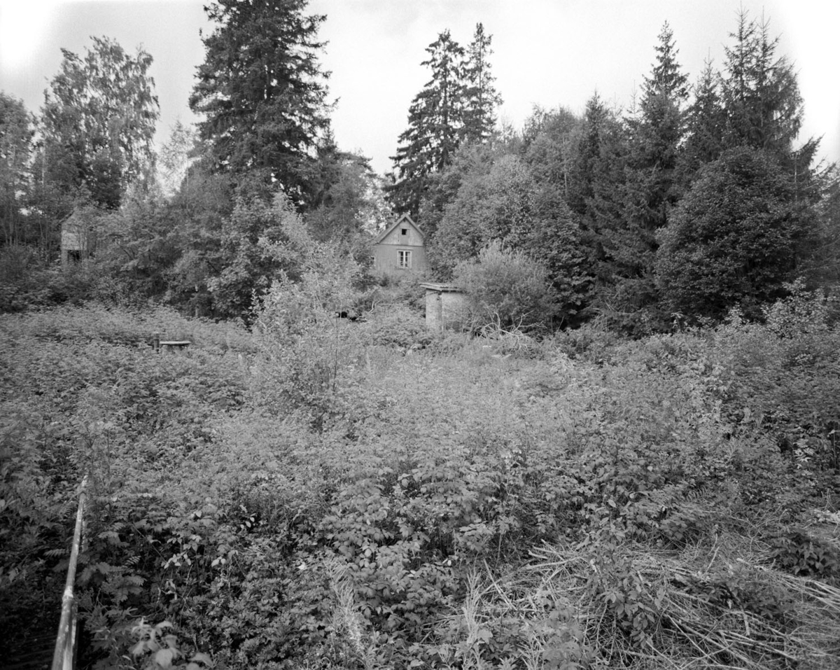 Hytte i skog