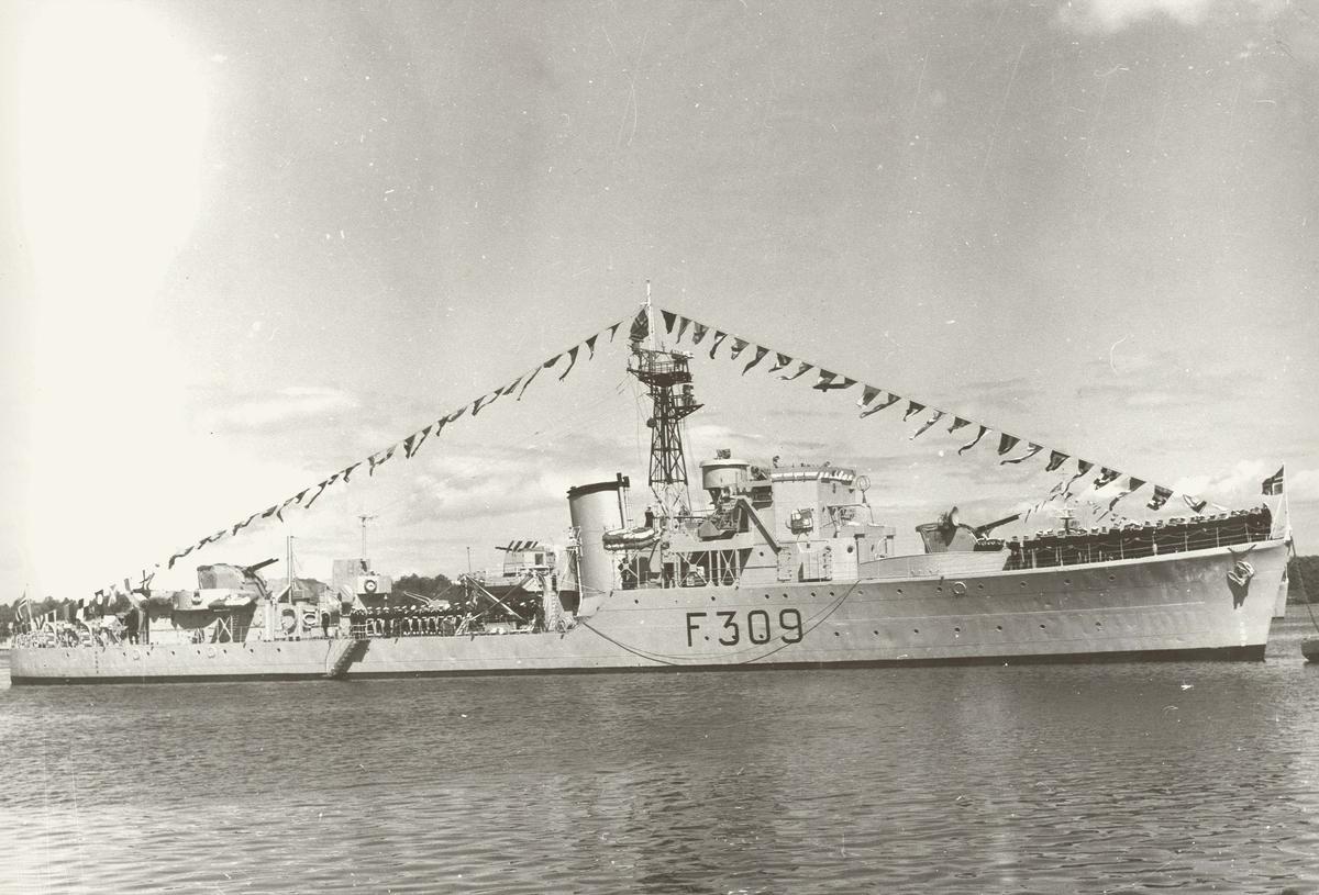 "Motiv: Jageren ""NARVIK"" (D309) - styrbord bredside"