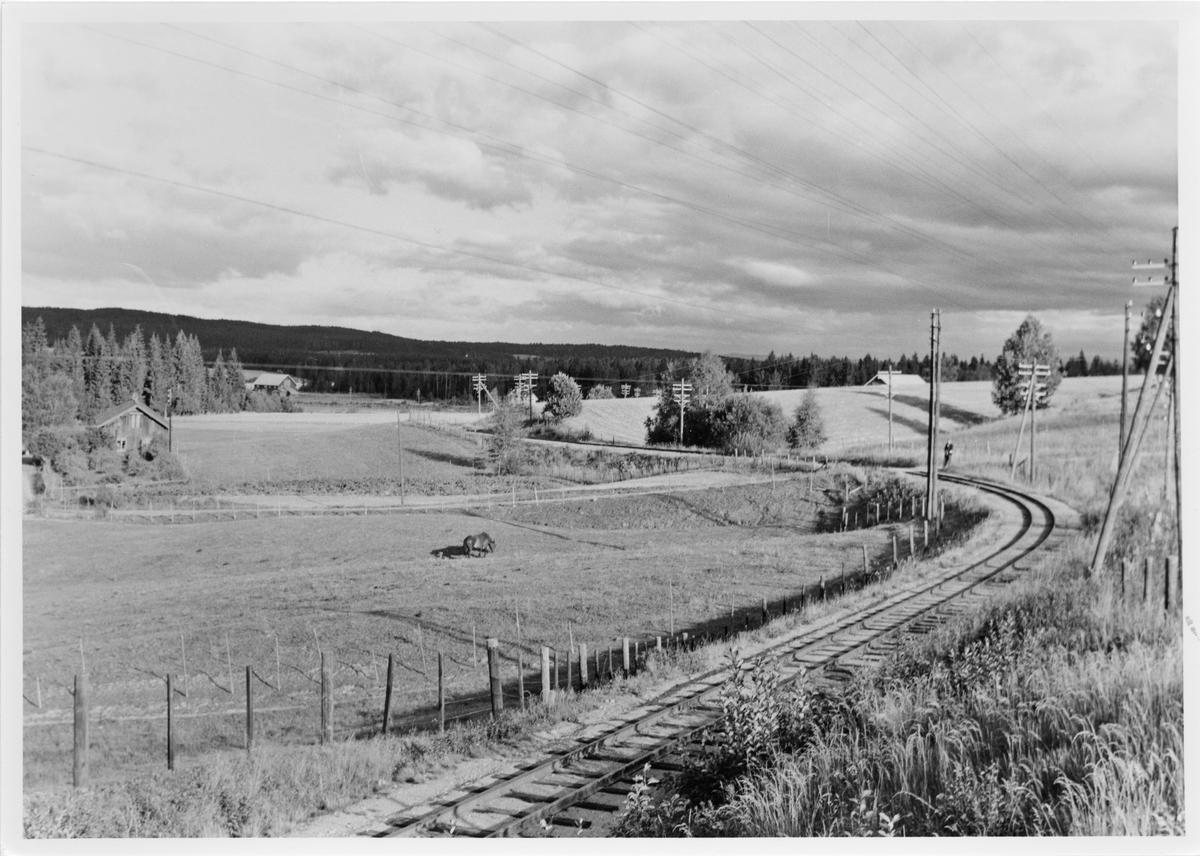 Utsikt over Harkerudbakken. Reisekamerat Mogens Bruun skimtes t.h. i bildet.