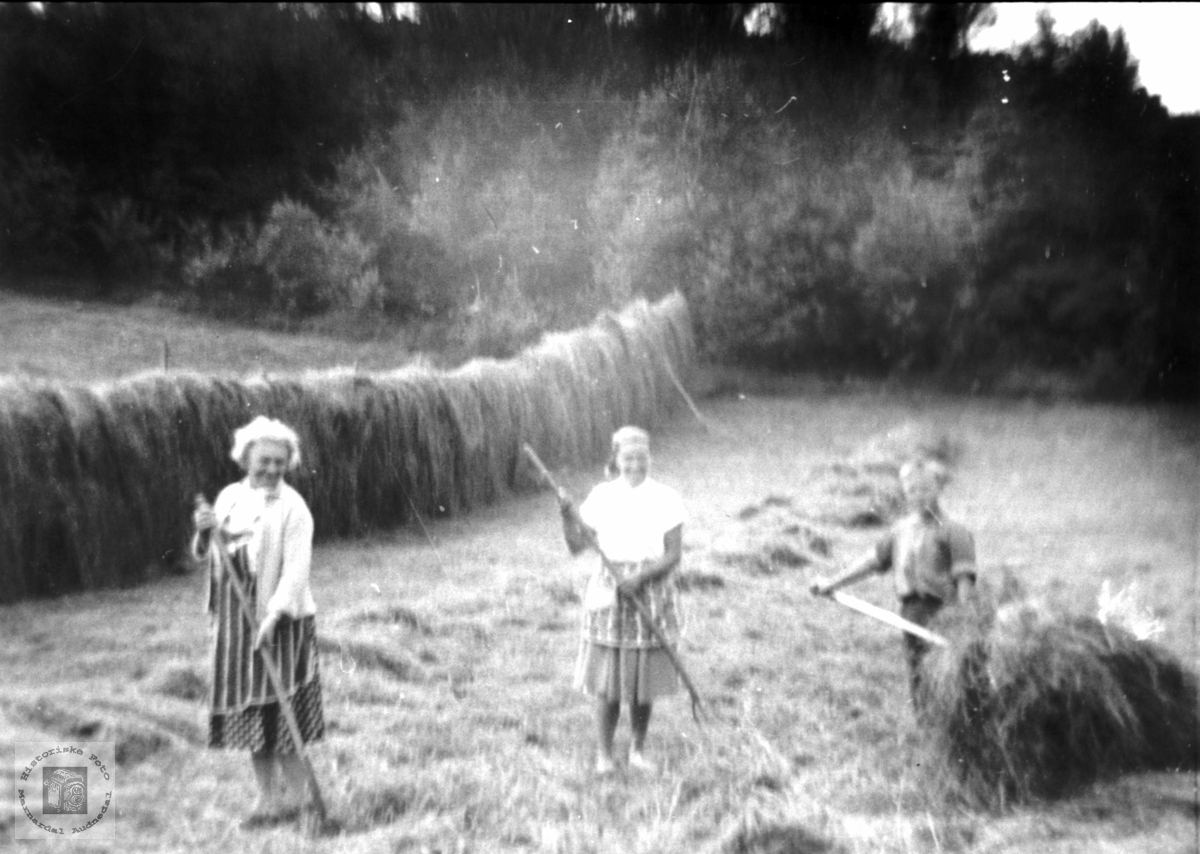 """Haustonn """"Der heima"""" på Foss Bjelland."""