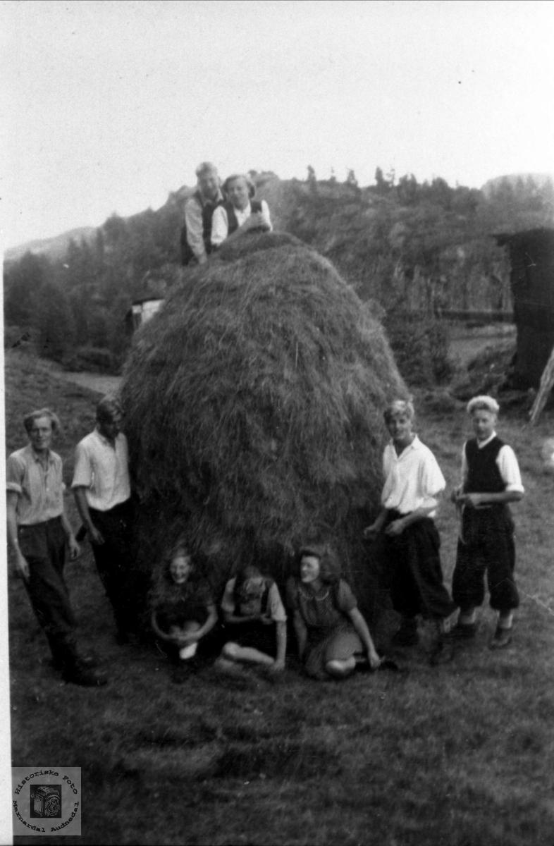 Ungdomar fra Haugland/ Roland i Bjelland ved høystakk