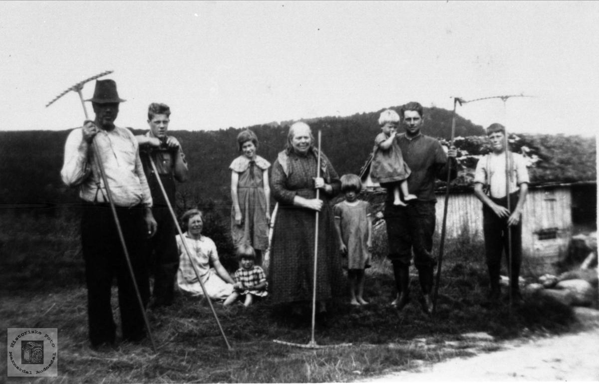 Haustonn i Rydlende, Bjelland.