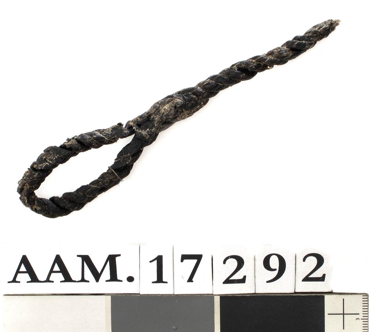 Taustump med en løkke. Tynt tau med en vel 5 cm lang løkke.  ( G 1307. )