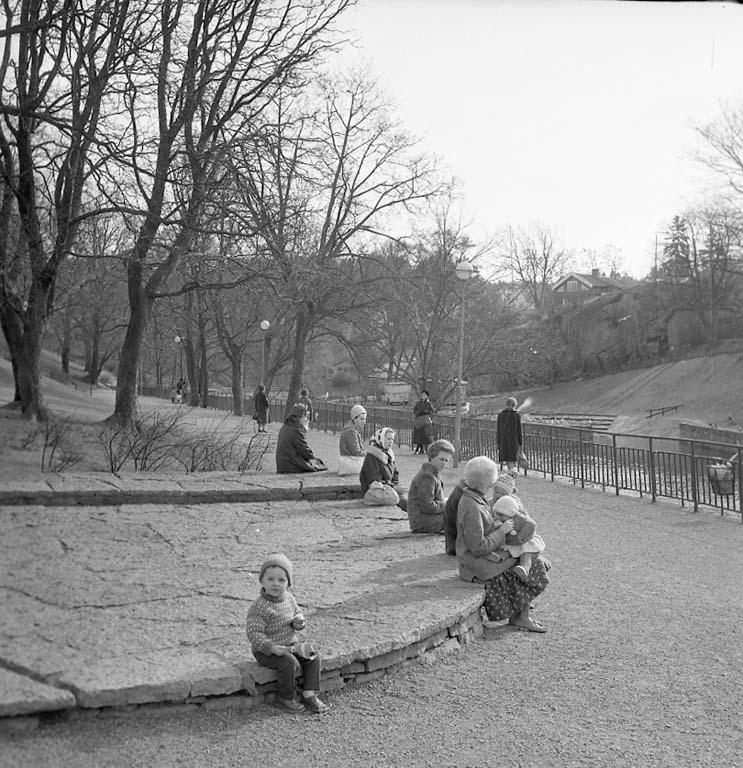 En dag i parken