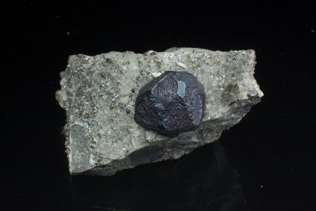 Bornitt og kvarts på matriks. Bornitt krystall litt skadet. På eksplosjonsbreksje-bergart? Dzhezkagzan, Zhezqazghan Oblysy.