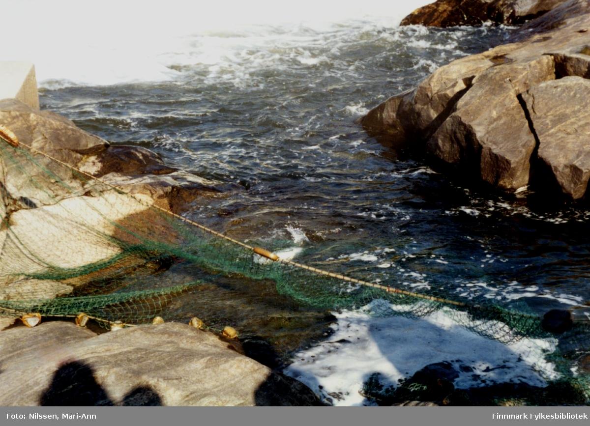 Kastenota ute i Neidenelva, käpäläfiske 1990