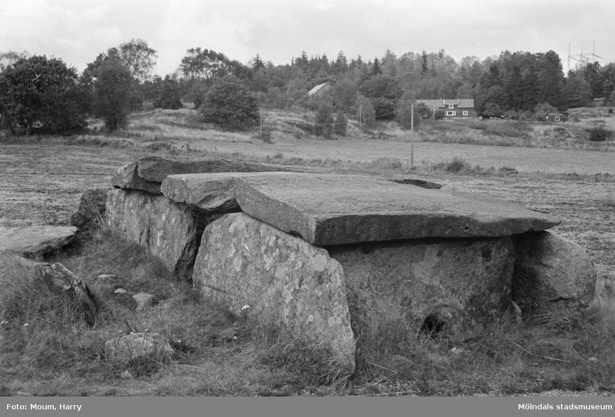 """Hällkistan """"Dvärgahuset"""" vid Norra Hällesåkersvägen i Dvärred, Lindome, år 1983.  För mer information om bilden se under tilläggsinformation."""