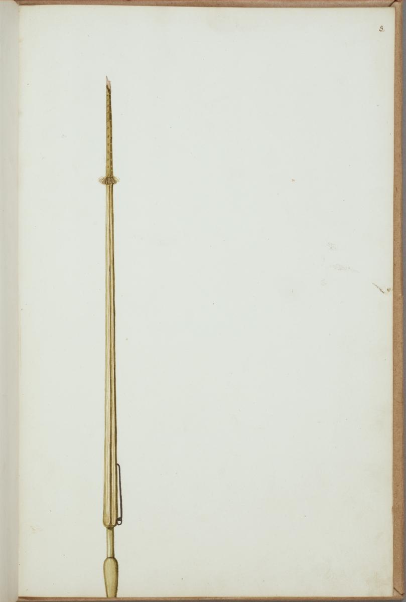 Avbildning i gouache föreställande fälttecken taget som trofé av svenska armén. De avbildade standarstången finns bevarad i Armémuseums samling, för mer information, se relaterade objekt.