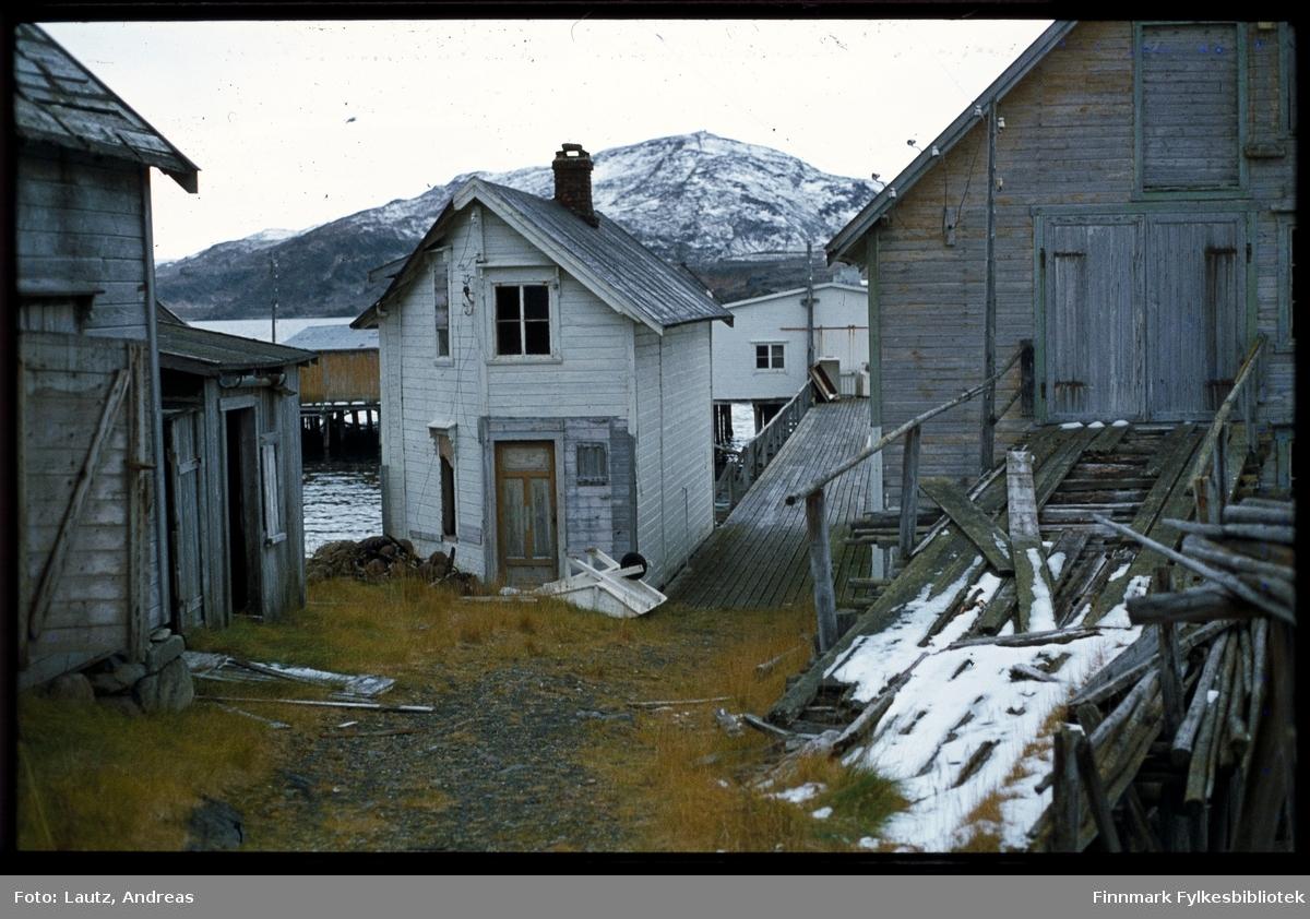 Kongsfjord. Skråbygde hus på kaia.