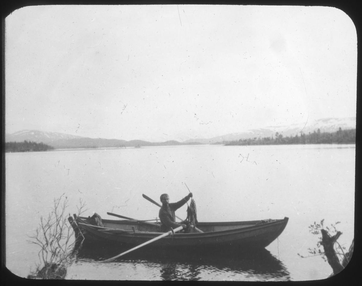 """""""N. 584 a). Fiskefangst. Majavand. G25."""" står det på glassplaten. Mann sitter og viser frem fangsten som er tredd inn på en kvist. Det henger mange fisker tett i tett på kvisten. Båten er utstyrt med to par årer, så man kan anta at fotografen har gått i land for å ta bildet. Bak i båten skimter man en sekk. Båtgen ligger på et vann eller en stor elv og man ser skogkledd landskap i bakgrunnen og fjell med snøflekker. Mannen er kledd i samisk kofte."""