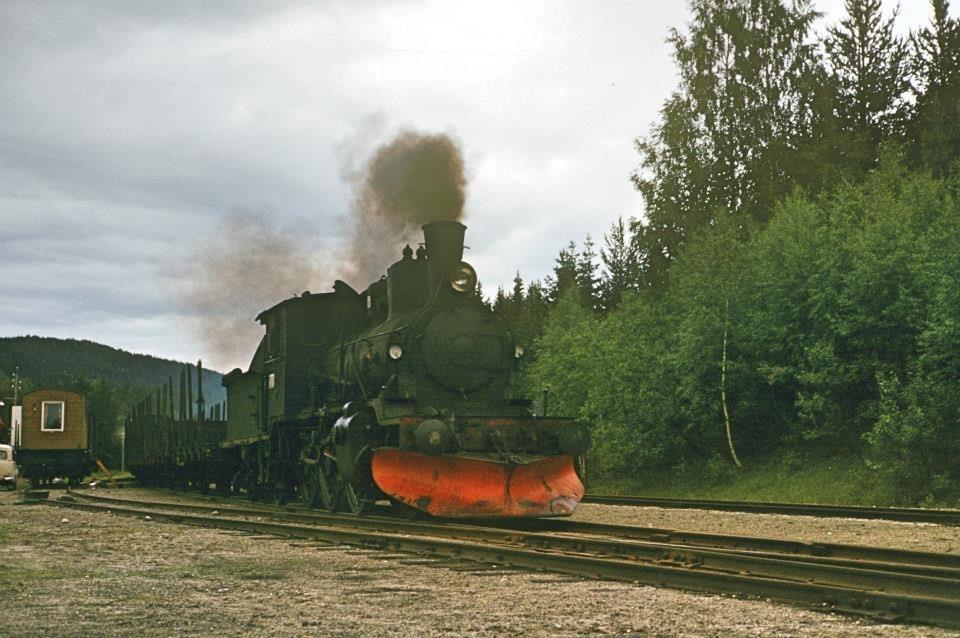 Godstog trukket av damplok 21b nr. 225 på Lampeland stasjon .