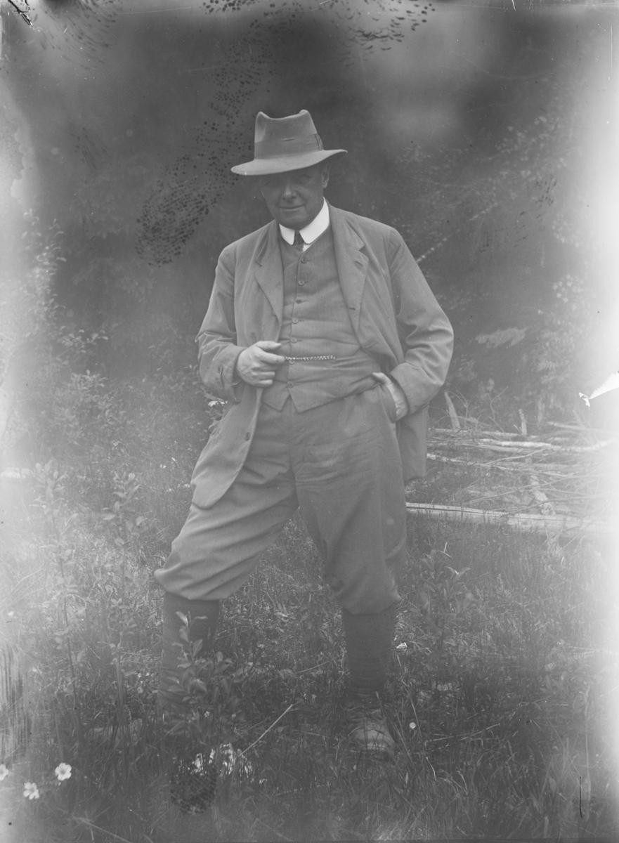 Størmer, Fredrik Carl Mülertz (1874 - 1957)