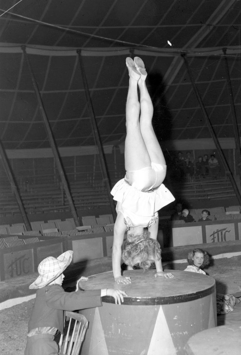 Furuviksparken invigdes 1936  1950 var ett år då Furuviksparken investerade kraftigt.  Cirkus Konsten att stå på händerna på olika föremål