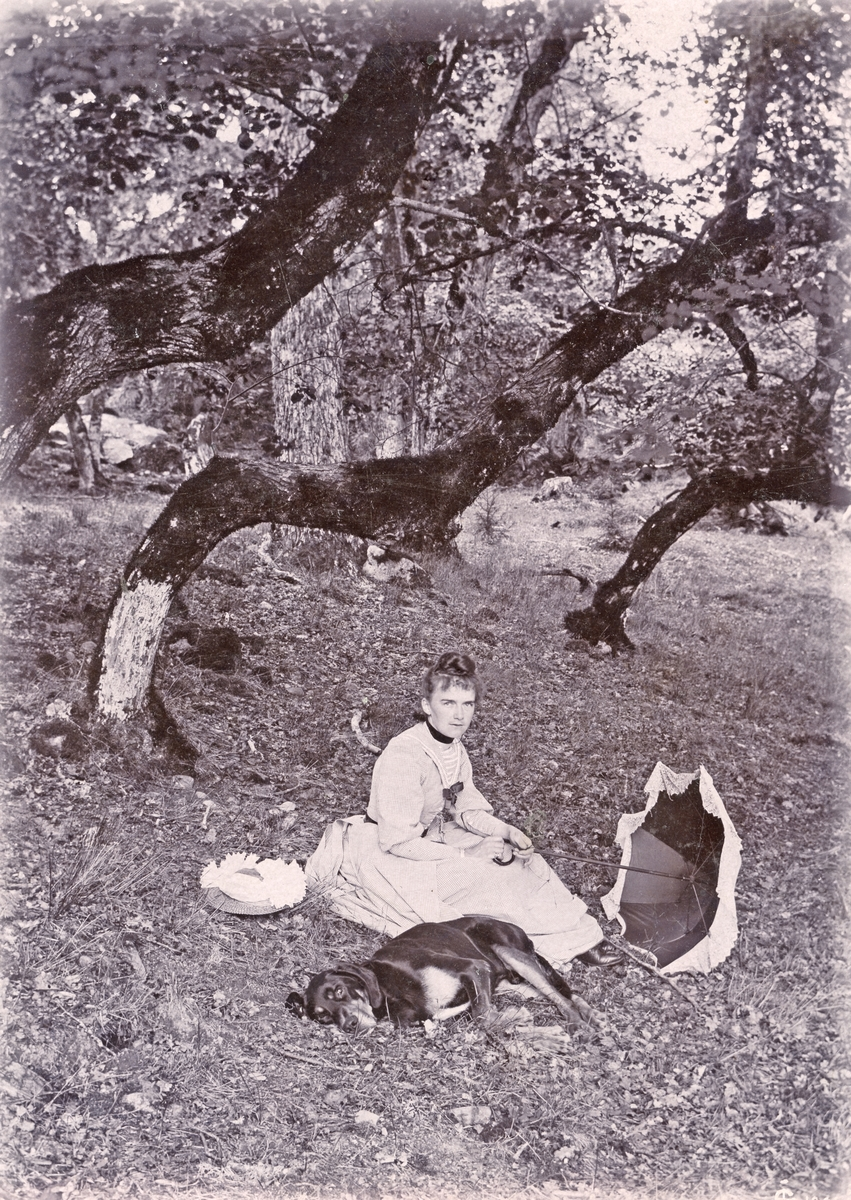 Fröken Amalia Lundqvist har sökt skuggan i en skogsbacke invid föräldrahemmet och tillika prästgården Kornäs . Hon är dotter till kyrkoherden i Skällvik och Sankt Anna,  Gustaf Leonard Lundqvist och makan Jacuette, född Ljunglöf. Intill sig ligger familjens hund Tom. Bilden är tagen av den fotointresserade fadern omkring förra sekelskiftet.