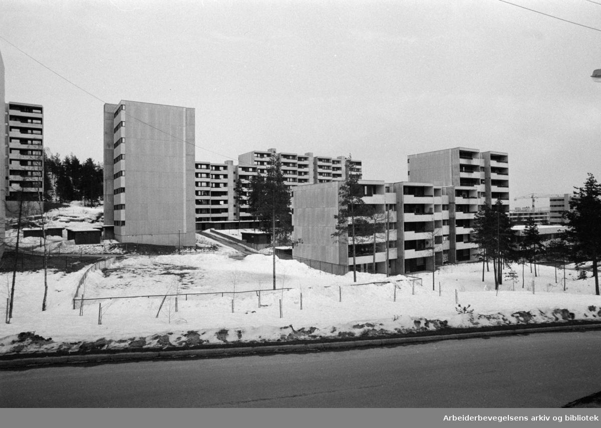 Romsås. Ravnekollen. April 1975