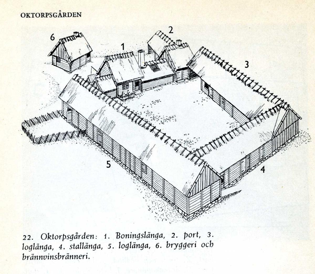 """Oktorpsgården från Slöinge socken i södra Halland flyttades till Skansen 1896 och var den första gård som i sin helhet uppfördes på Skansen. Gården är av """"sydsvensk"""" typ och är helt sluten. Gårdshusen är placerade så att stallängan ligger mitt emot boningslängan, medan loglängorna fyller ut de återstående två sidorna. En stor inkörsport är placerad mellan boningslängan i norr och östra loglängan. Dessutom finns två mindre gångportar, en bredvid inkörsporten och en mellan vedboden och svinstian, vid andra ändan av boningslängan. Hela gårdsplanen är stensatt med kullersten. På Oktorpsgården finns en boningslänga, en port, två loglängor, en stallänga samt ett brygghus. Byggnaderna är ursprungligen uppförda under 1700- och 1800-talet."""