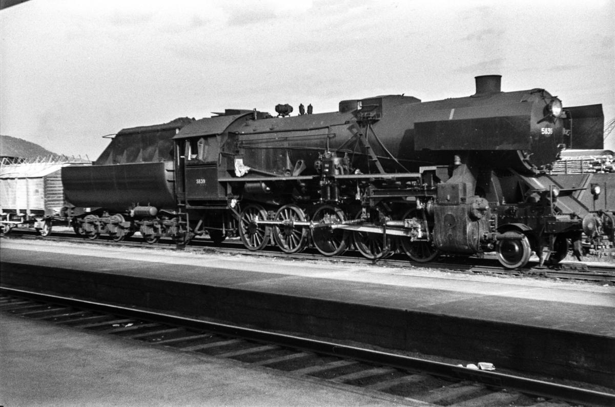 Damplokomotiv type 63a nr. 5839 med godstog retning Nordlandsbanen på Trondheim stasjon.
