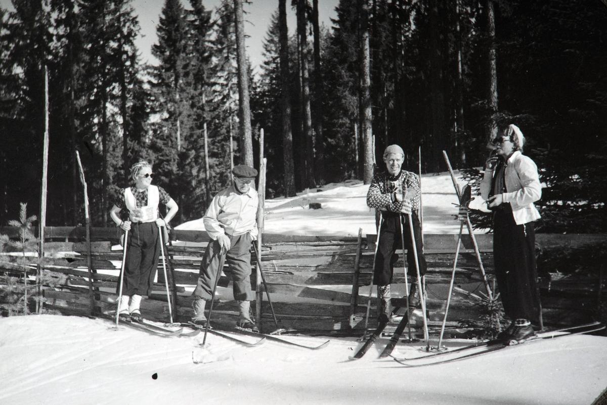 Skitur, skiantrekk, t.v. Gudrun Huse f. Knapholen, Conrad Pedersen, Thorbjørn Knapholen, Signe Knapholen ca 1945
