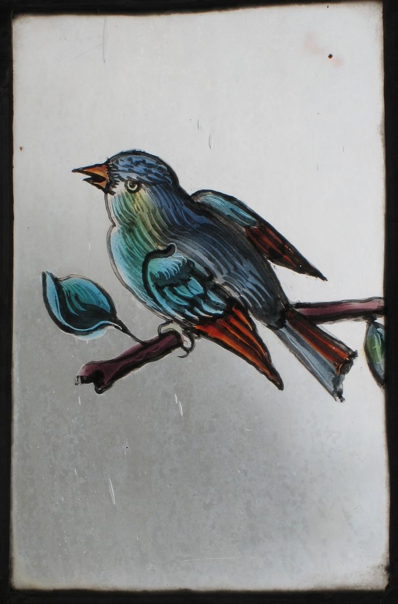 Liten fugl, i rødt, blått og grønt mot ufarget  lys bakgrunn.